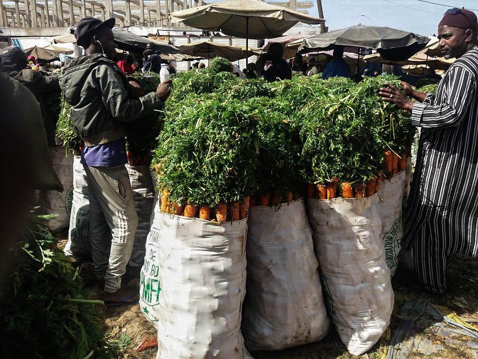 Les produits vendus au détail sur les marchés sont importés des zones rurales, comme la zone des Niayes, l'une des plus productives du pays, située dans le nord-ouest du Sénégal