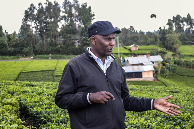 Soil testing Technology: comment l'open data peut sauver le sol africain