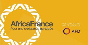 Young Leaders concours africafrance