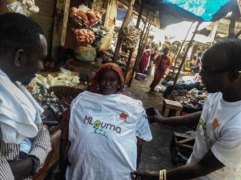 La start-up Mlouma révolutionne la commercialisation des produits agricoles au Sénégal