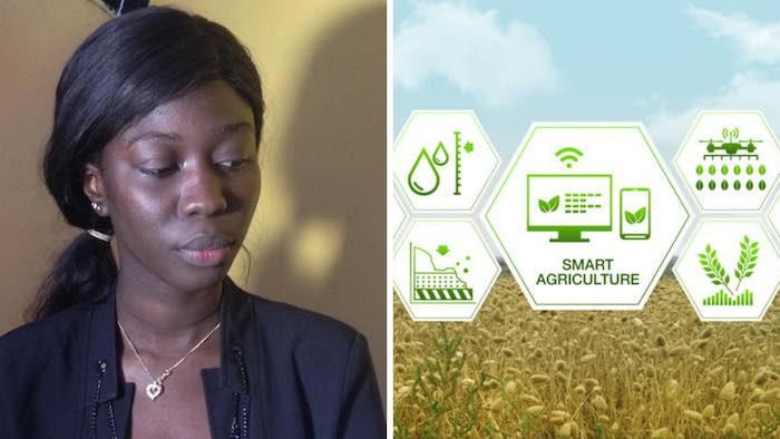 """Hapsatou BA, la Sénégalaise qui """"communique"""" avec le sol grâce à son projet Smart Agriculture"""