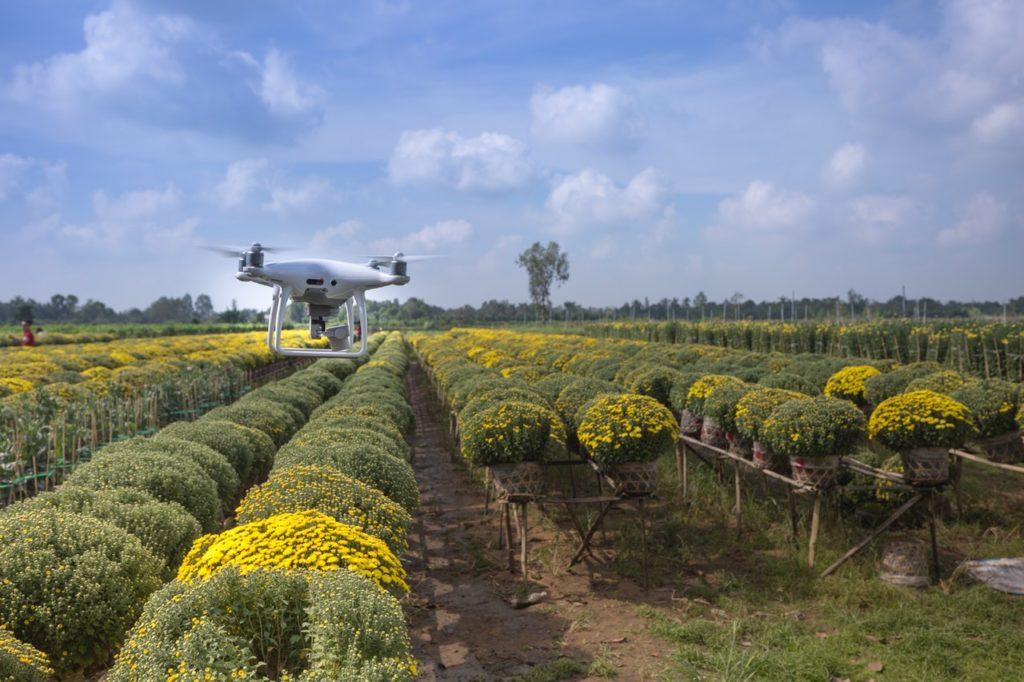 Numérisation des chaînes de valeur agricoles : La GSMA lance un Fonds d'innovation