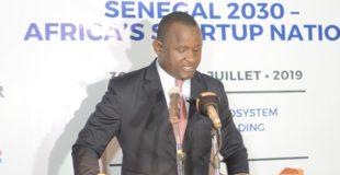 Papa Amadou Sarr, Délégué général à l'entrepreneuriat rapide