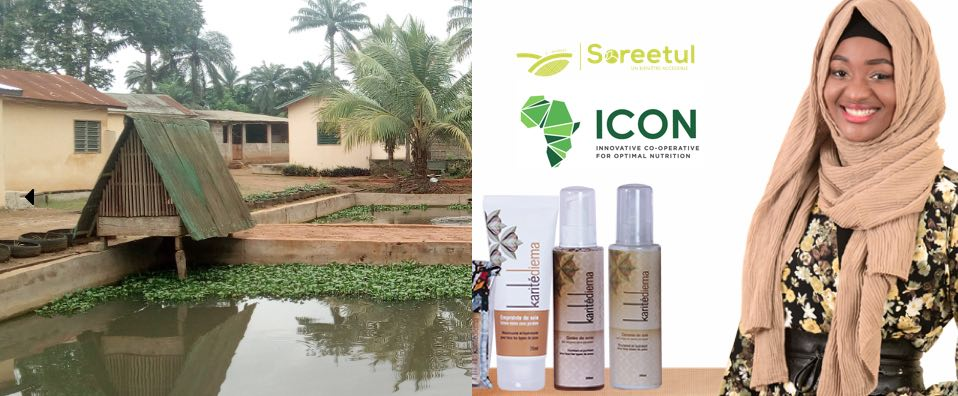 AgriTech – Soreetul et Icon Africa signent un partenariat ce mercredi à Dakar
