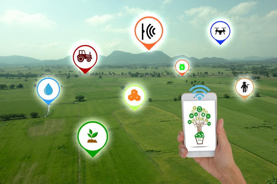 Agriculture intelligente : la CEDEAO mobilise 80 millions de dollars pour les petits agriculteurs
