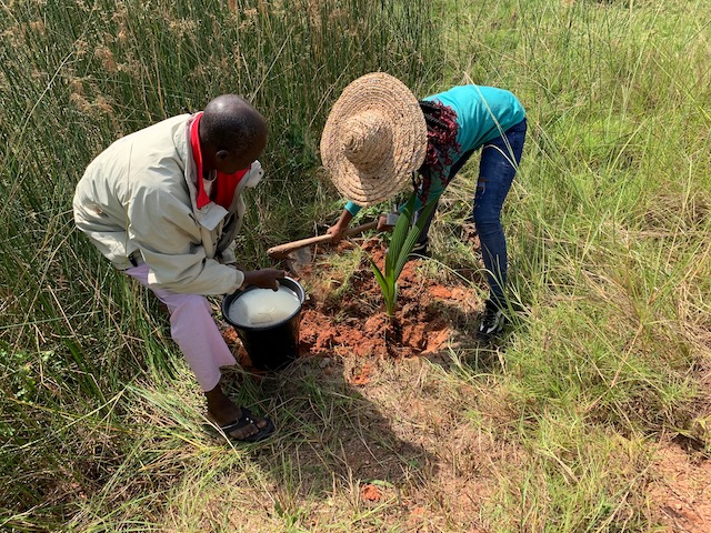 Sénégal : L'AFD injecte 6,4 millions d'euros dans les secteurs de l'agriculture et de l'eau