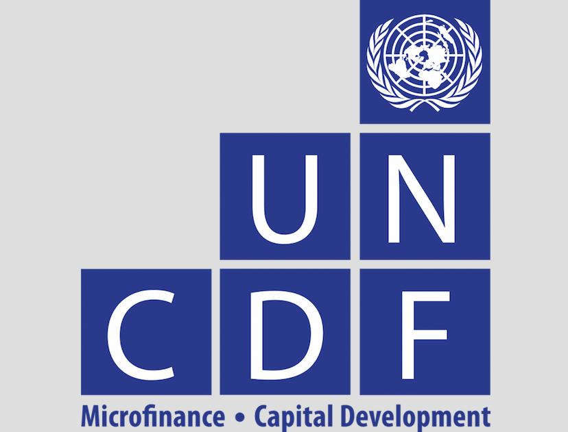 UNCDF recrute un Consultant national pour des services d'appui en informatique