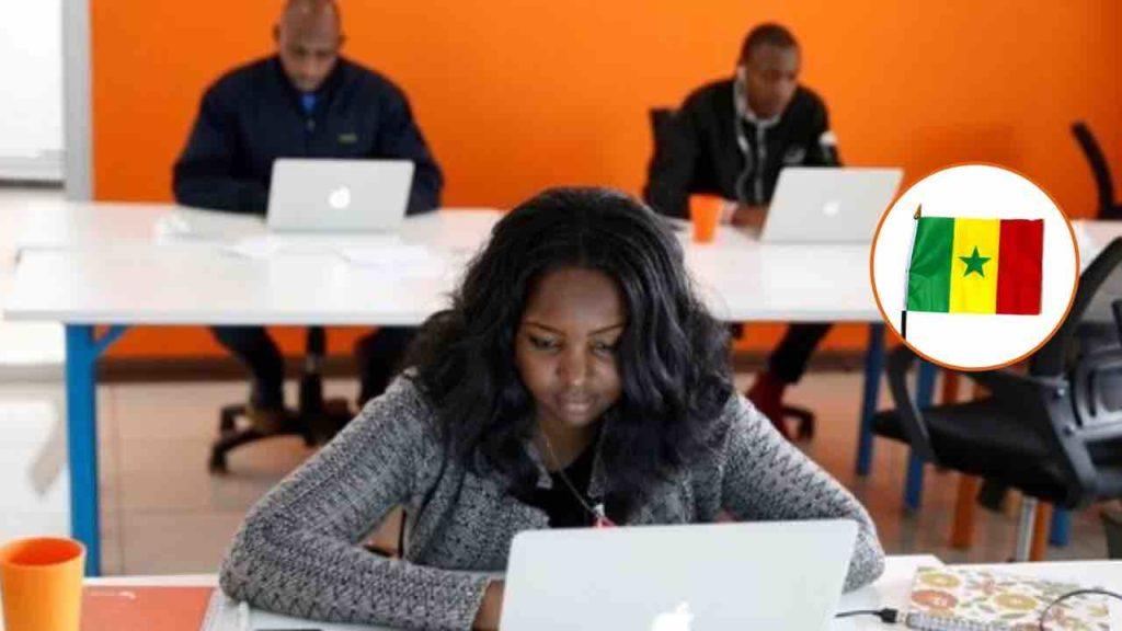 Exonération, Commande publique…les startups sénégalaises face aux défis de la restructuration