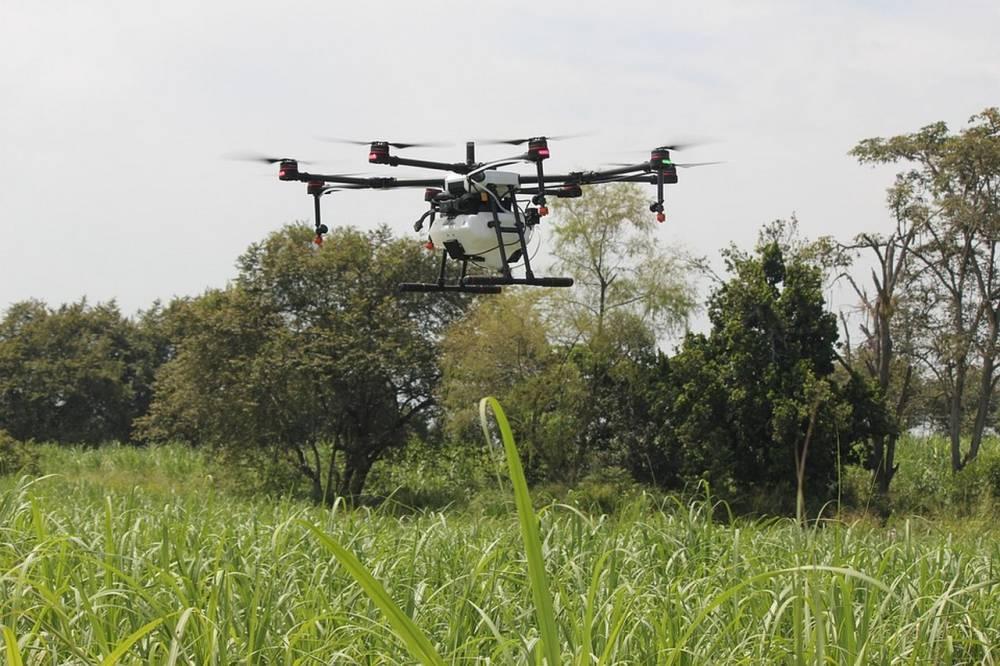 CAMEROUN: une startup utilise des drones pour le traitement et l'irrigation des cultures