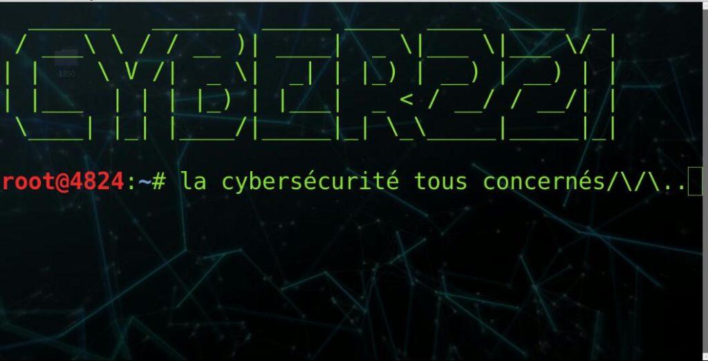 Mouhamadou Bamba Bathily, Cyber221: «nouveau type de dérives qui menacent les internautes et les entreprises»