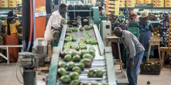 Le PNUD  octroie une subvention de 125 millions FCFA à 20 PME