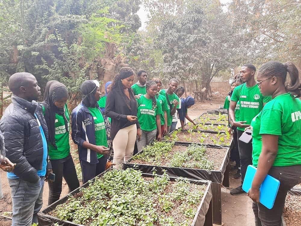 Comment attirer les jeunes dans l'agro-industrie en Afrique
