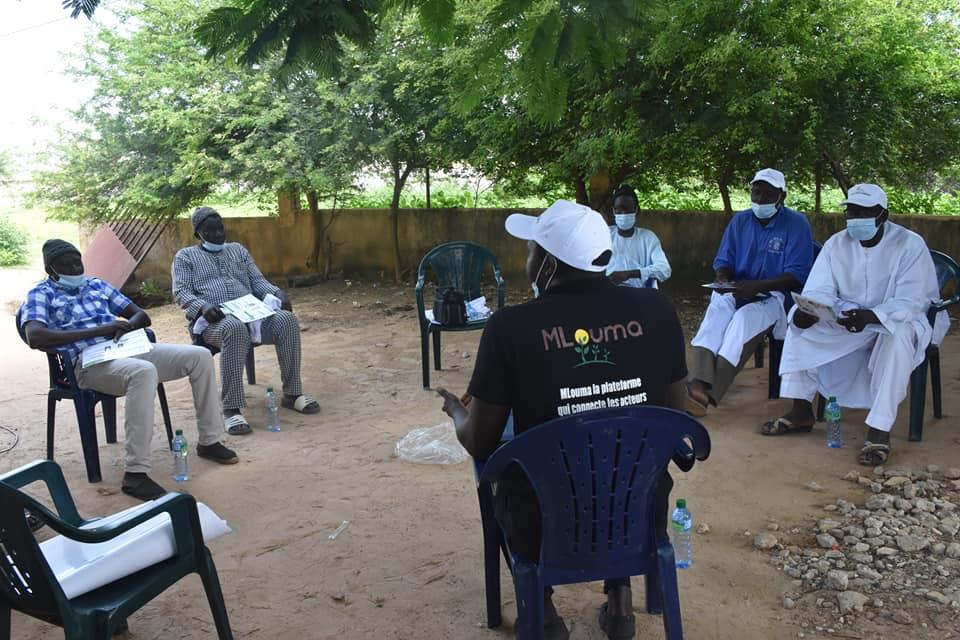 Météo Mbay : Mlouma évalue sa plateforme  de collecte et partage de données climatiques