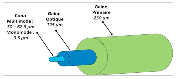 Figure 3 : Configuration d'une fibre optique générique avec son cœur, sa gaine optique et sa gaine primaire.