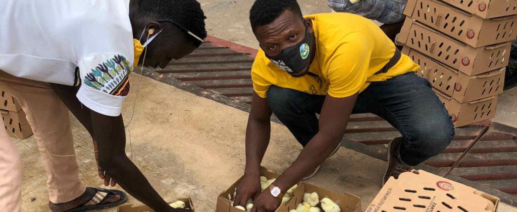 Cet ancien banquier nigérian  devenu champion de l'agriculture africaine