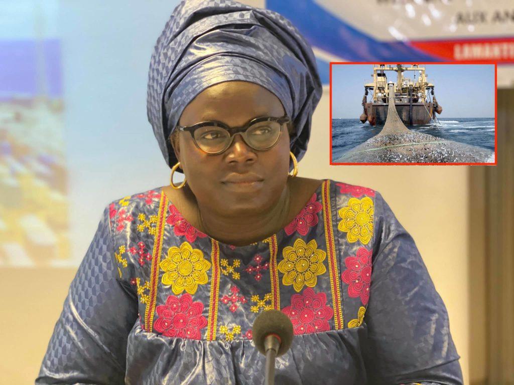 Pêche INN : le Sénégal engagé dans les négociations de subventions